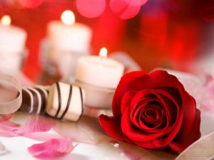 love spells,lost love spells,Real Love Spells,true love spells,Spell to Make Someone Fall in Love,Spells To Remove Marriage and Relationship Problems,Truth Love Spells,Spell to Mend a Broken Heart,Rekindle Love Spells,Spells to Turn Friendship to Love,Lust Spell and Sex Spells,Spells to Delete the Past,voodoo love spells,black magic love spells,witchcraft love spells
